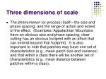 three dimensions of scale1