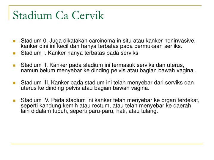 Stadium Ca Cervik