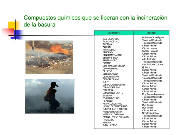 Compuestos químicos que se liberan con la incineración de la basura