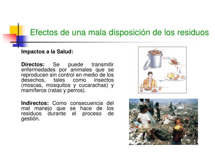 Efectos de una mala disposición de los residuos