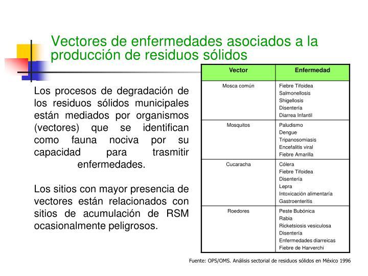 Los procesos de degradación de los residuos sólidos municipales están mediados por organismos (vectores) que se identifican como fauna nociva por su capacidad para trasmitir enfermedades.