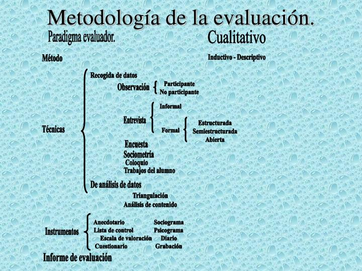 Metodología de la evaluación.