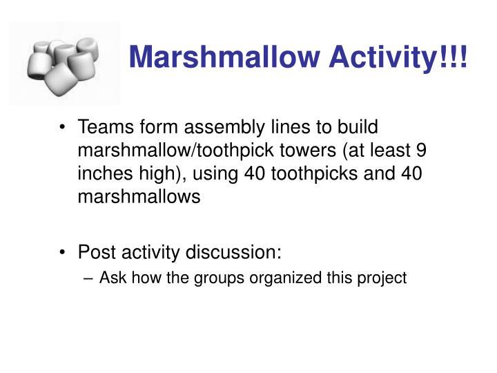 Marshmallow Activity!!!