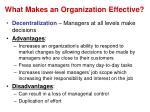 what makes an organization effective1