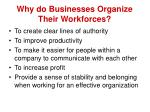 why do businesses organize their workforces