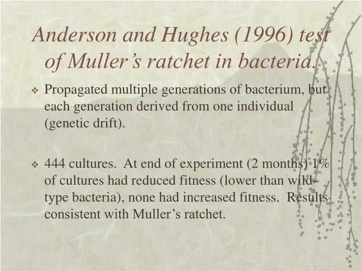 Anderson and Hughes (1996) test of Muller's ratchet in bacteria.