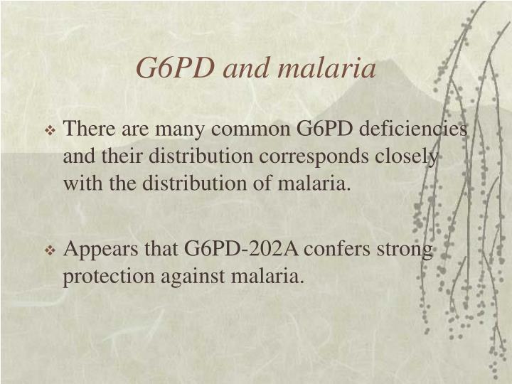G6PD and malaria