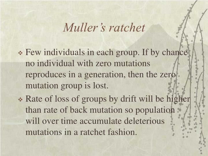 Muller's ratchet