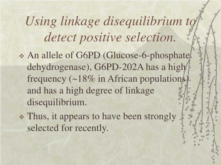 Using linkage disequilibrium to detect positive selection.