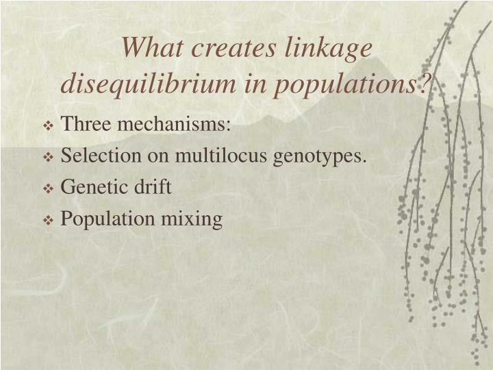 What creates linkage disequilibrium in populations?