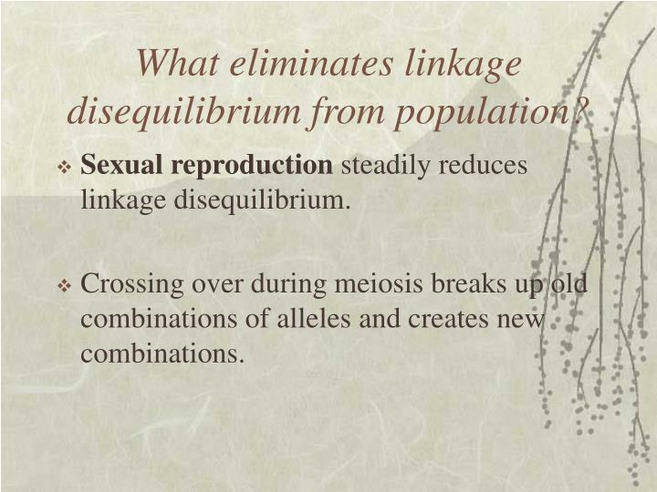 What eliminates linkage disequilibrium from population?