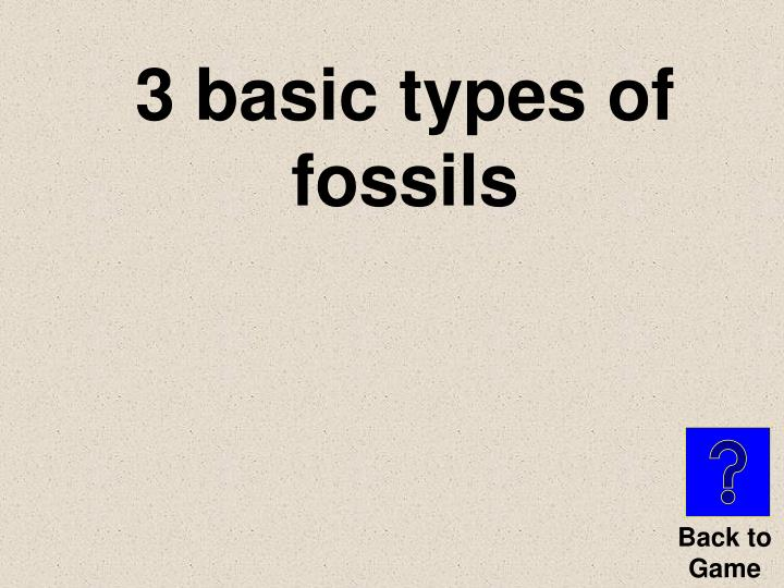 3 basic types of fossils
