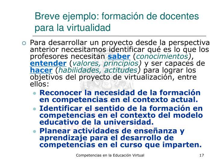 Breve ejemplo: formación de docentes para la virtualidad