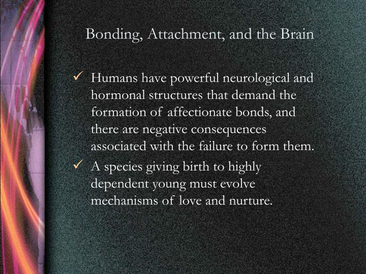 Bonding, Attachment, and the Brain