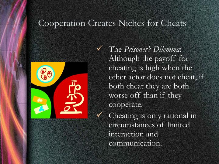 Cooperation Creates Niches for Cheats