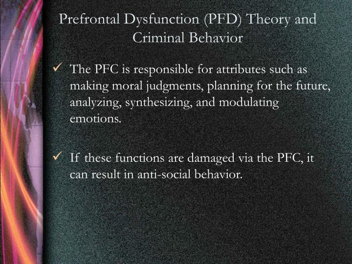 Prefrontal Dysfunction (PFD) Theory and Criminal Behavior