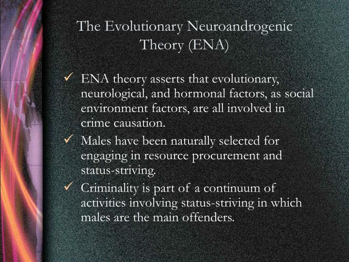 The Evolutionary Neuroandrogenic Theory (ENA)