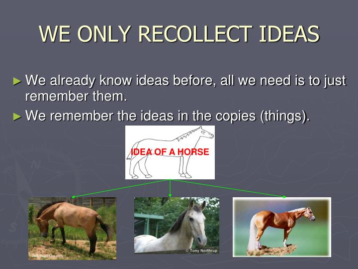 WE ONLY RECOLLECT IDEAS