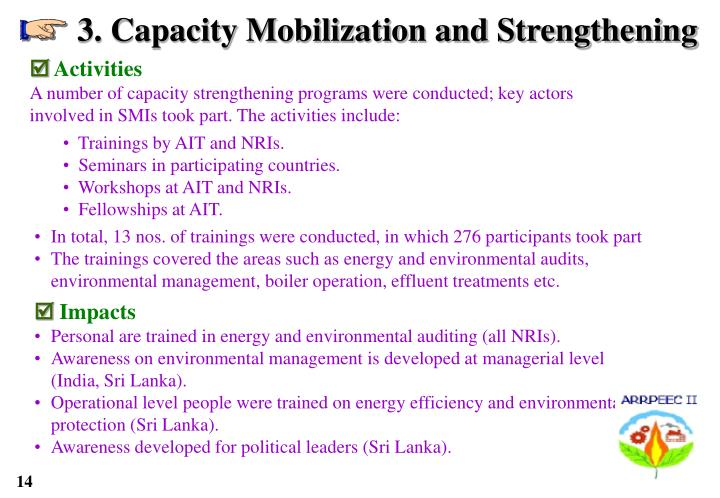 3. Capacity Mobilization and Strengthening