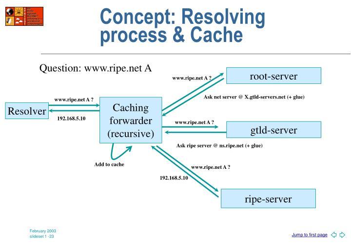 Concept: Resolving process & Cache