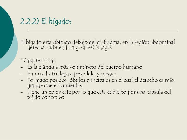 2.2.2) El hígado: