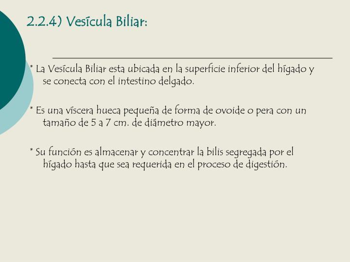 2.2.4) Vesícula Biliar: