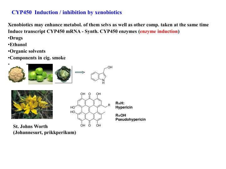 CYP450  Induction / inhibition by xenobiotics