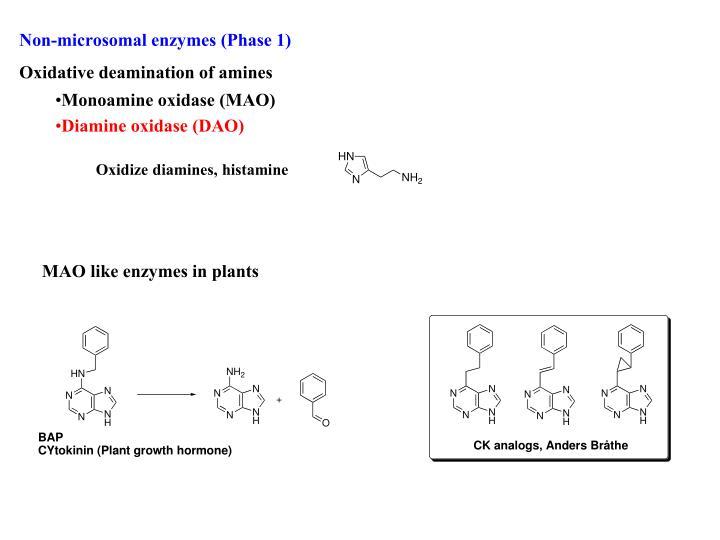 Non-microsomal enzymes (Phase 1)