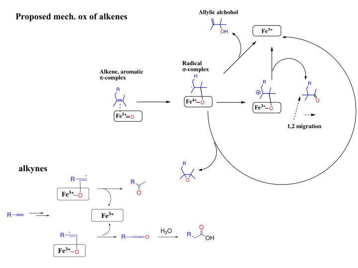 Proposed mech. ox of alkenes