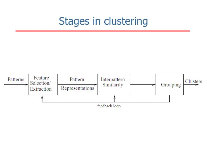 Stages in clustering