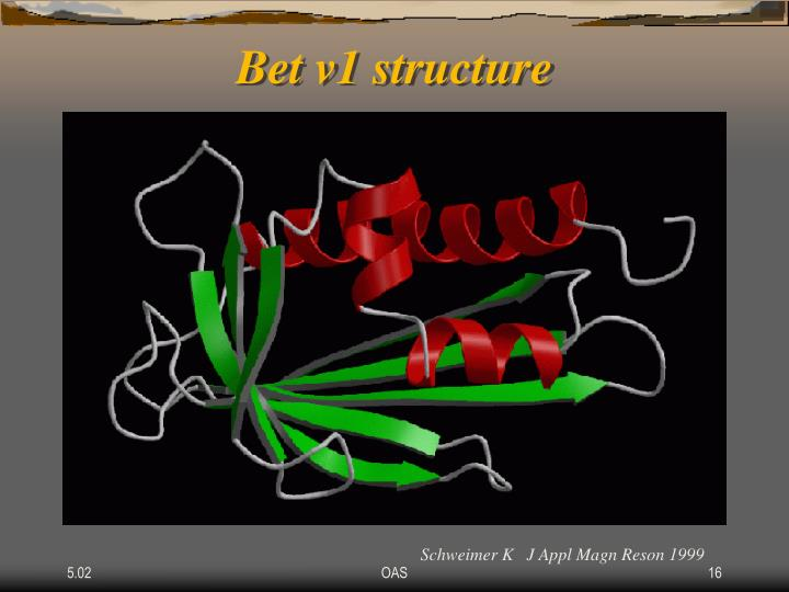 Bet v1 structure