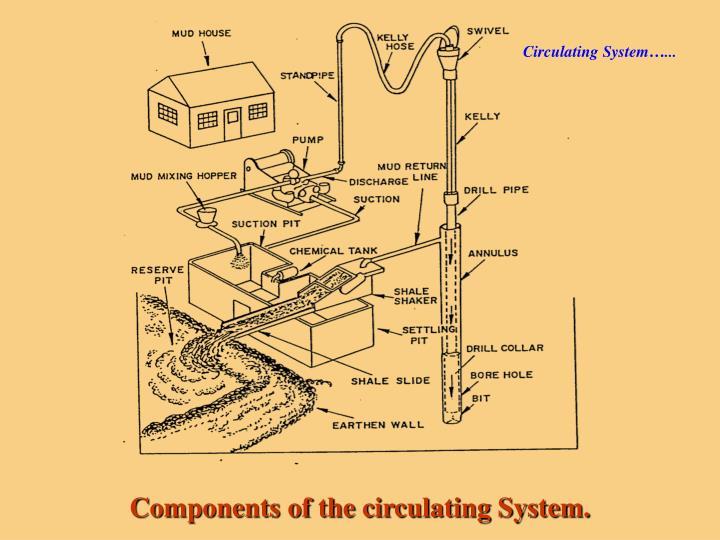 Circulating System…...