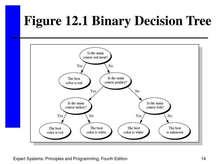 Figure 12.1 Binary Decision Tree