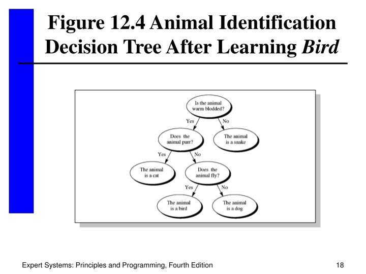 Figure 12.4 Animal Identification