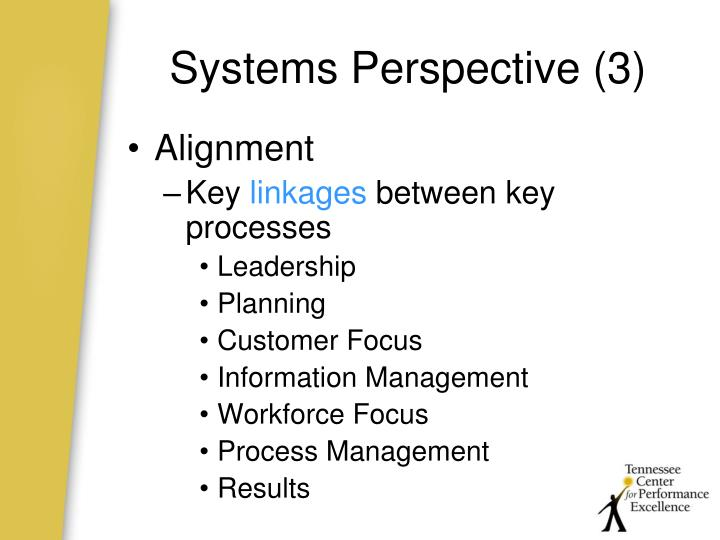 Systems Perspective (3)