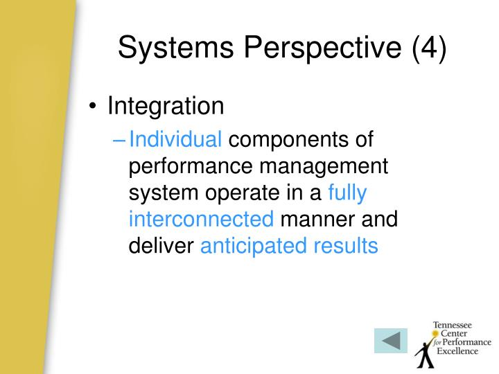 Systems Perspective (4)