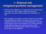 4 external risk mitigation portfolio management