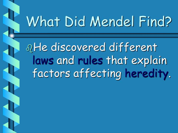What Did Mendel Find?