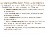 assumptions of the hardy weinberg equillibrium
