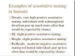 examples of assortative mating in humans