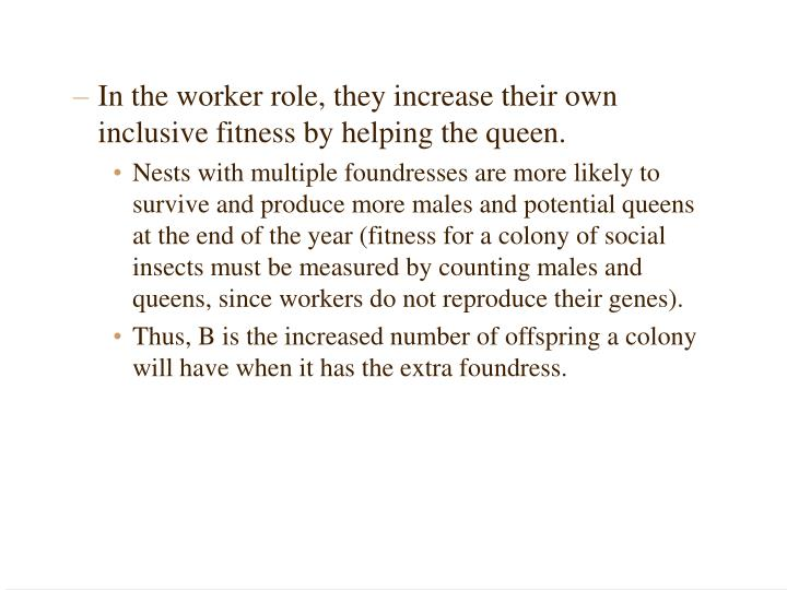 In the worker role, they increase their own inclusive fitness by helping the queen.