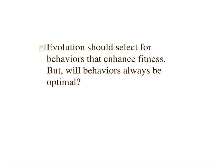 Evolution should select for behaviors that enhance fitness. But, will behaviors always be optimal?