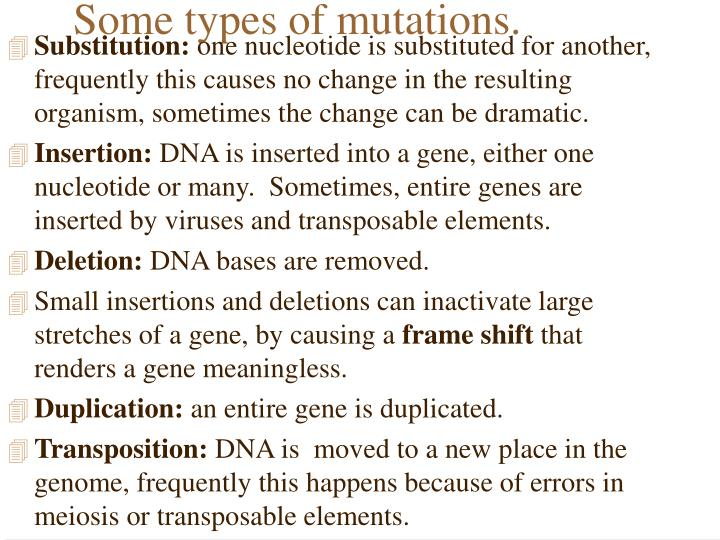 Some types of mutations.