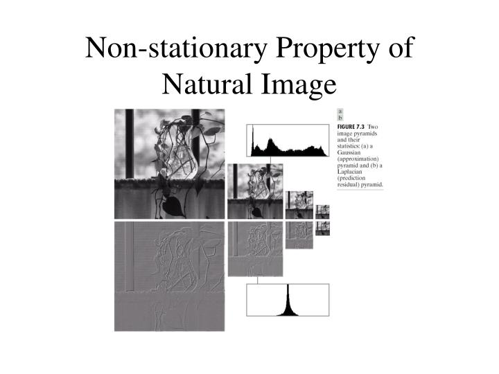 Non-stationary Property of Natural Image