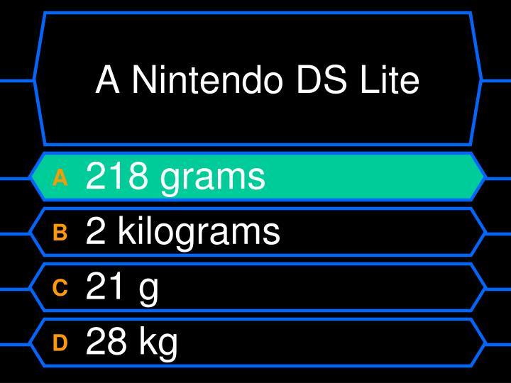 A Nintendo DS Lite