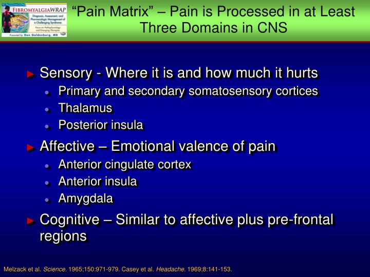 """Pain Matrix"" – Pain is Processed in at Least Three Domains in CNS"