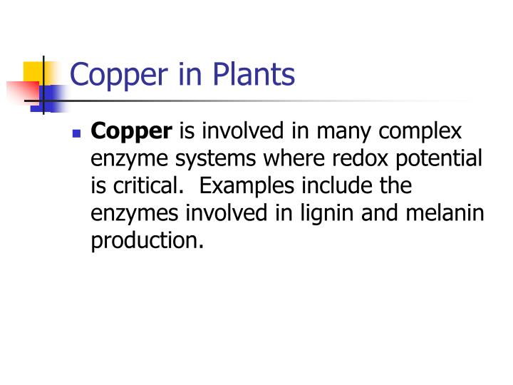 Copper in Plants
