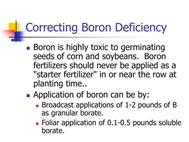 Correcting Boron Deficiency