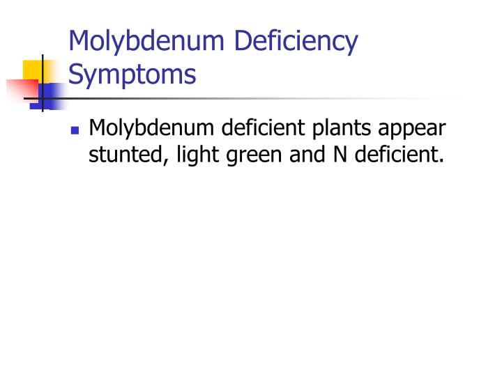 Molybdenum Deficiency Symptoms