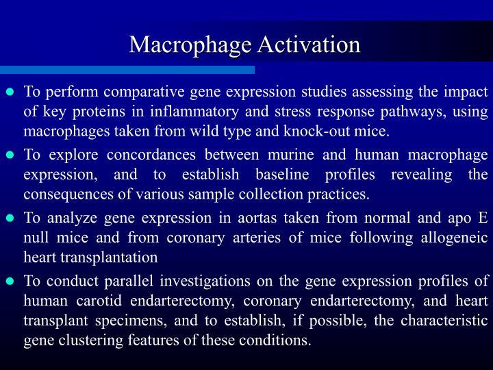 Macrophage Activation